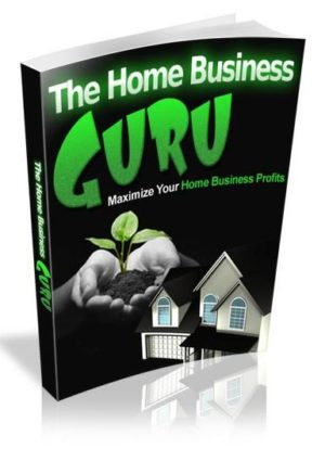 The Home Business Guru eBook