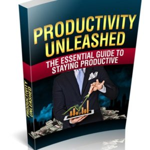 Productivity Unleashed eBook