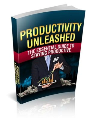 Productivity Unleashed eBook